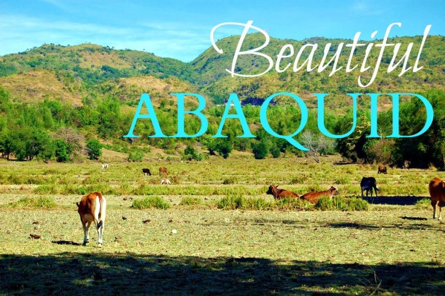 Abaquid